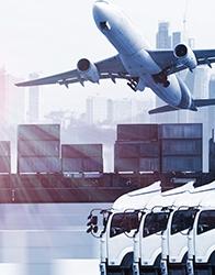 Formation Export International